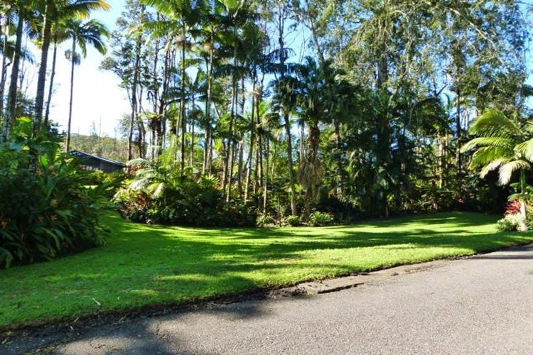 Vacant Land in Puna, Leilani Estates on behalf of Arabel L Camblor Realty