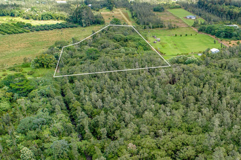 Sold vacant land (5.37 acres) in Puna, Kurtistown on the Big Island, listing provided by Arabel Camblor Realty