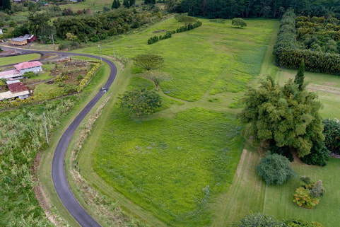 Sold vacant land in Puna, Kurtistown on the Big Island, listing provided by Arabel Camblor Realty
